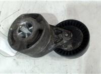 06E903133B Механизм натяжения ремня, цепи Audi A6 (C6) 2005-2011 4647962 #1