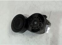 06E903133B Механизм натяжения ремня, цепи Audi A6 (C6) 2005-2011 4647962 #2