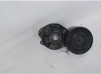 Механизм натяжения ремня, цепи Audi A6 (C6) 2005-2011 4398266 #1