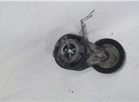 Механизм натяжения ремня, цепи Audi A6 (C6) 2005-2011 4398266 #2