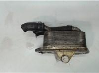 Теплообменник Audi A6 (C6) 2005-2011 5505123 #1