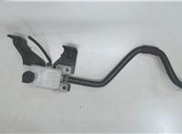 460903NA0B Бачок тормозной жидкости Nissan Leaf 5936825 #1