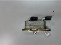 б/н Теплообменник Audi A6 (C6) 2005-2011 5965271 #1