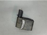038117021D Теплообменник Audi A6 (C6) 2005-2011 6026115 #1