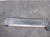 144965690R Радиатор интеркулера Renault Latitude 6185780 #2