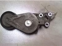 Механизм натяжения ремня, цепи Seat Alhambra 2001-2010 6581234 #1