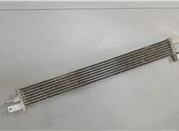 Радиатор гидроусилителя Chevrolet Captiva 2011- 6642060 #2