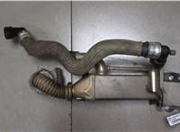 Охладитель отработанных газов Citroen C5 2008- 6707071 #1