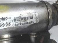 Охладитель отработанных газов Hyundai Tucson 1 2004-2009 6718335 #3