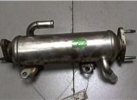 Охладитель отработанных газов Chevrolet Captiva 2006-2011 6725199 #1