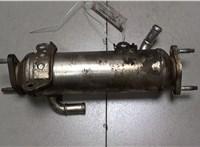 Охладитель отработанных газов Chevrolet Captiva 2006-2011 6725199 #2
