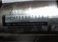 Охладитель отработанных газов Chevrolet Captiva 2006-2011 6725199 #3