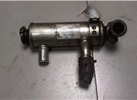 Охладитель отработанных газов Ford Focus 2 2008-2011 6727888 #1