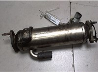 Охладитель отработанных газов Opel Antara 6728177 #2