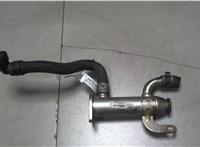 Охладитель отработанных газов Citroen C4 Grand Picasso 2006-2013 6751250 #1
