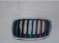 Решетка радиатора BMW X6 6776031 #1