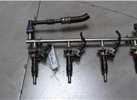 б/н Форсунка топливная Opel Insignia 2008-2013 6781584 #1