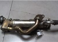 Охладитель отработанных газов Audi A6 (C6) 2005-2011 6838500 #1