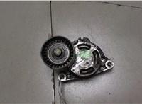 Натяжитель приводного ремня Opel Vivaro 6861903 #1