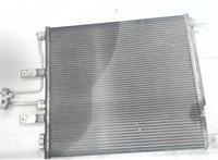 Радиатор кондиционера Dodge Ram 2008- 6868863 #1