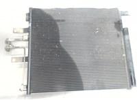 Радиатор кондиционера Dodge Ram 2008- 6868863 #2